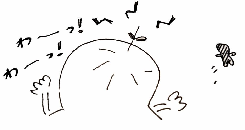 f:id:sawamama:20160224231954j:plain