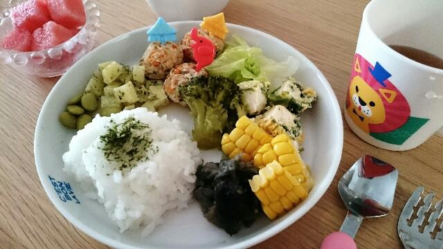 f:id:sawamama:20170204201236j:plain