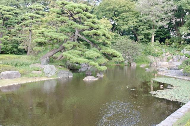 f:id:sawamurajin:20170519020819j:plain