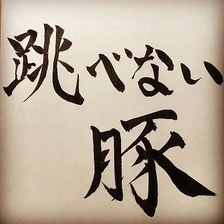 f:id:sawaraimamoru:20170411144006j:plain