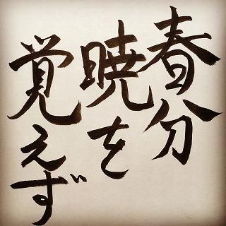 f:id:sawaraimamoru:20170411144651j:plain