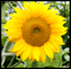 f:id:sawaruna91119:20120815223733p:image
