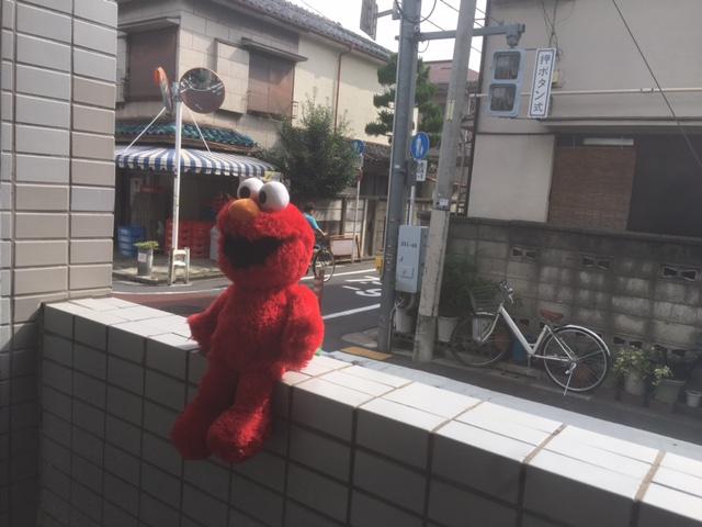 f:id:sawasakiyurie:20170930153003j:plain