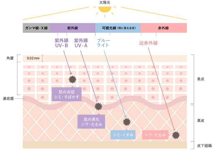 f:id:sawayaka0302:20201003080344p:plain