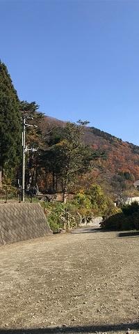 f:id:saya-yabu:20171103201253j:plain