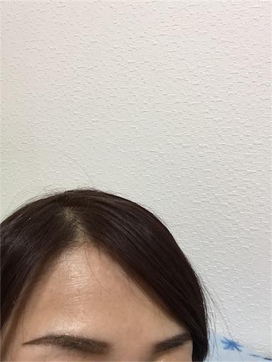 f:id:saya_log:20170120191449j:image