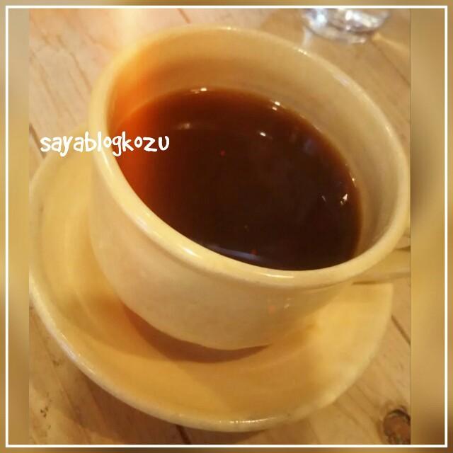 f:id:sayablogkozu:20171204204806j:image