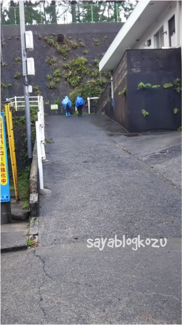 f:id:sayablogkozu:20180418133203j:image
