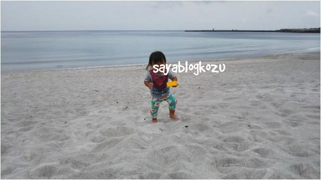 f:id:sayablogkozu:20180529121139j:image