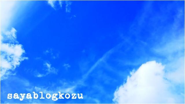 f:id:sayablogkozu:20180708062140j:image