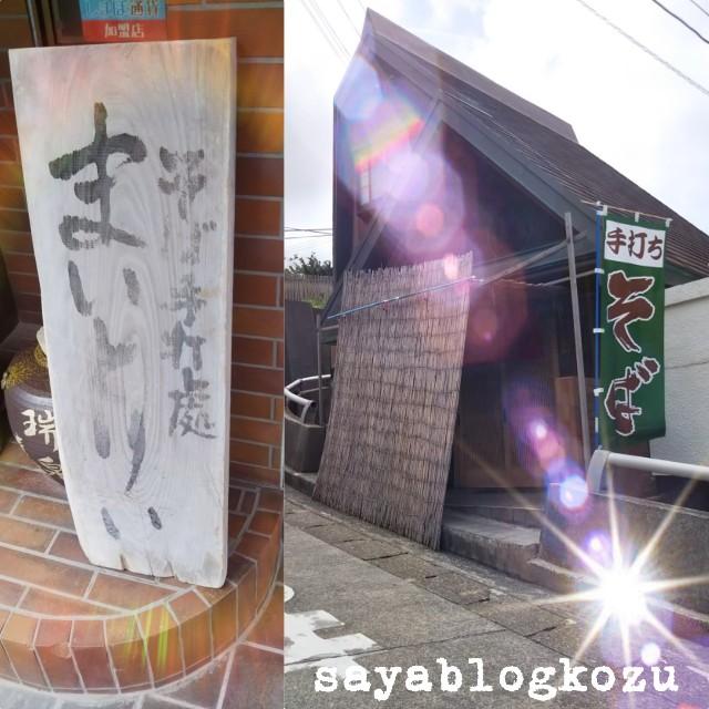 f:id:sayablogkozu:20180712221547j:image
