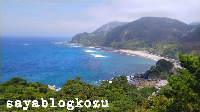 f:id:sayablogkozu:20180809132455j:image