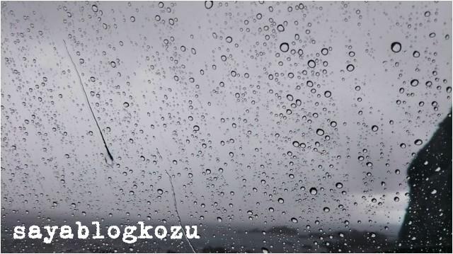 f:id:sayablogkozu:20180910102353j:image