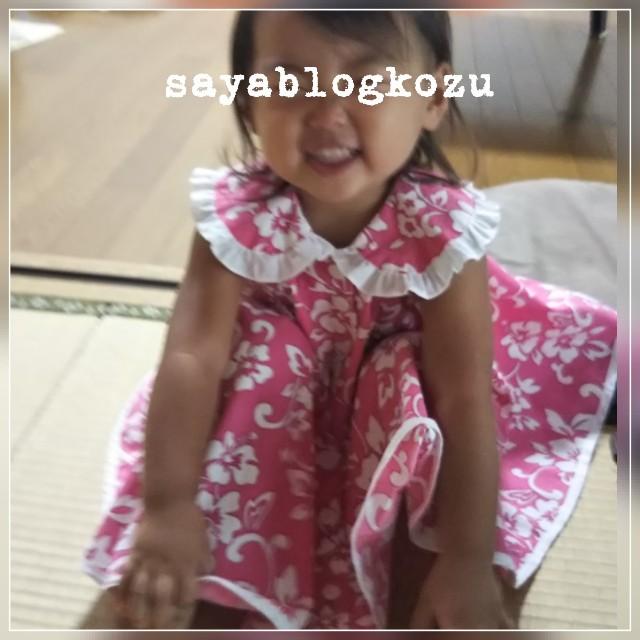 f:id:sayablogkozu:20180910102723j:image
