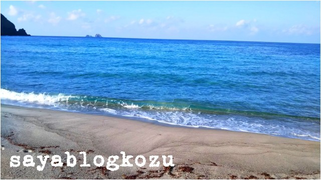 f:id:sayablogkozu:20181127150331j:image