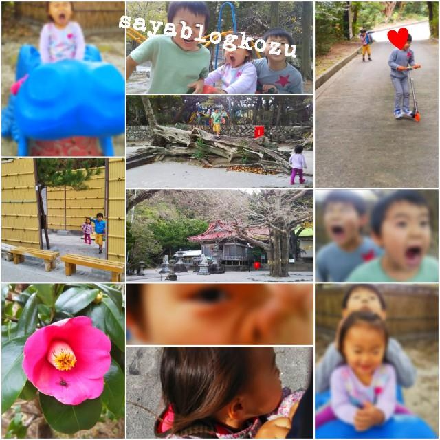f:id:sayablogkozu:20181210144450j:image