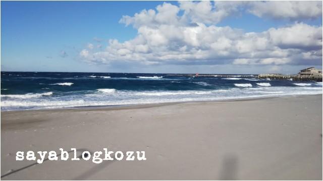 f:id:sayablogkozu:20181214140500j:image