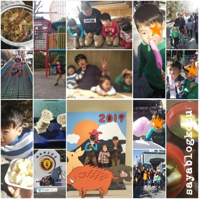 f:id:sayablogkozu:20190108162903j:image