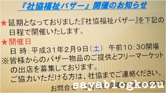 f:id:sayablogkozu:20190209162812j:image