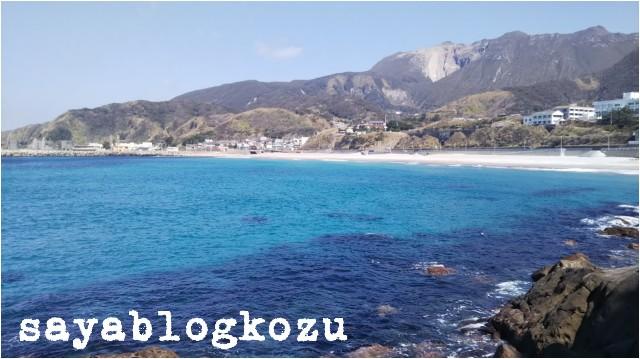 f:id:sayablogkozu:20190305203322j:image