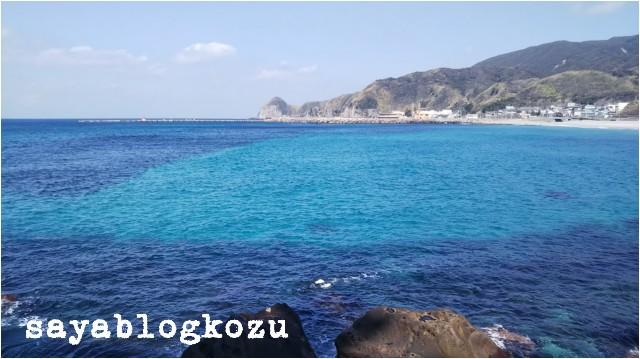 f:id:sayablogkozu:20190305203331j:image