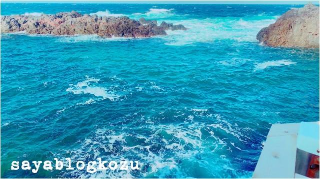 f:id:sayablogkozu:20190312083243j:image