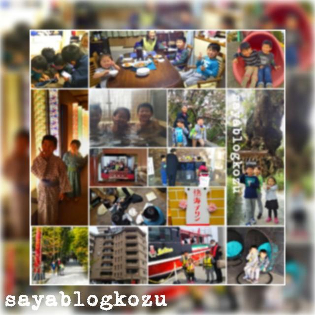 f:id:sayablogkozu:20190330151712j:image