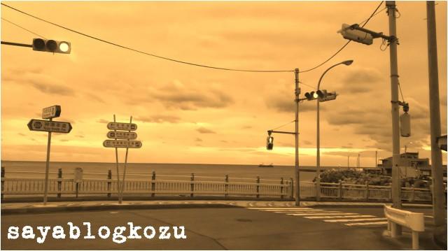 f:id:sayablogkozu:20190429055903j:image