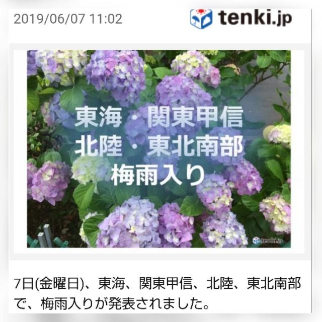 f:id:sayablogkozu:20190607122028j:image