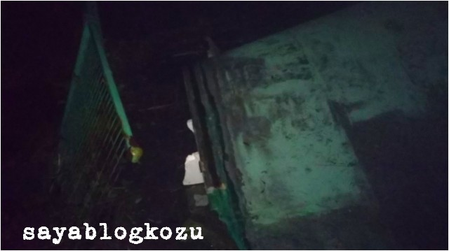 f:id:sayablogkozu:20190910153339j:image