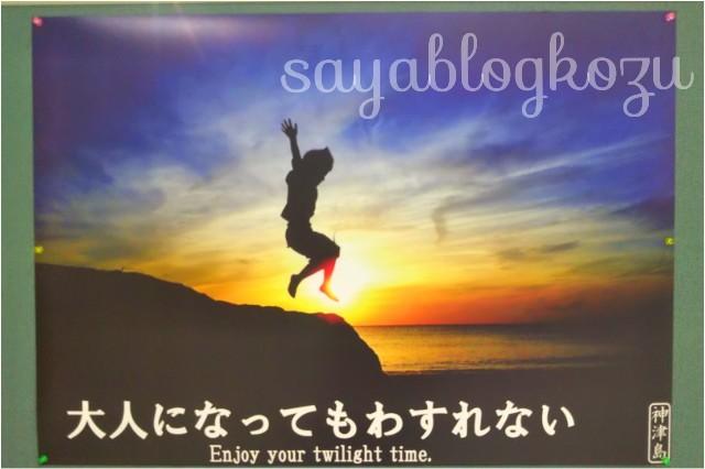 f:id:sayablogkozu:20200229093200j:image
