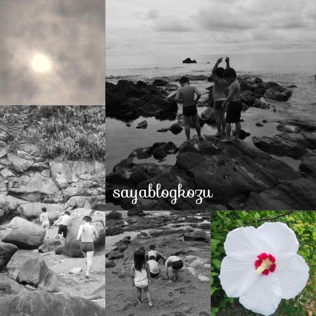 f:id:sayablogkozu:20200921202137j:image