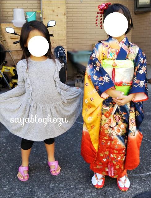 f:id:sayablogkozu:20201114122900j:image