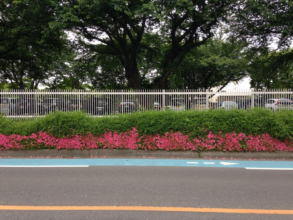 f:id:sayadoki:20160611005248j:plain