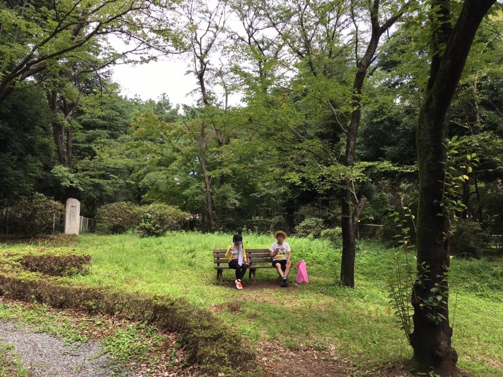 f:id:sayadoki:20160803080658j:plain