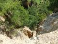 [徳島]阿波の土柱・山頂から下を覗き込む