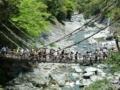 [徳島]かずら橋 GWで人大杉。