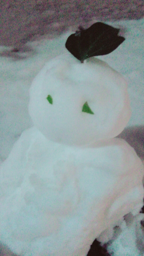 f:id:sayaka-araragi:20180129173835j:plain