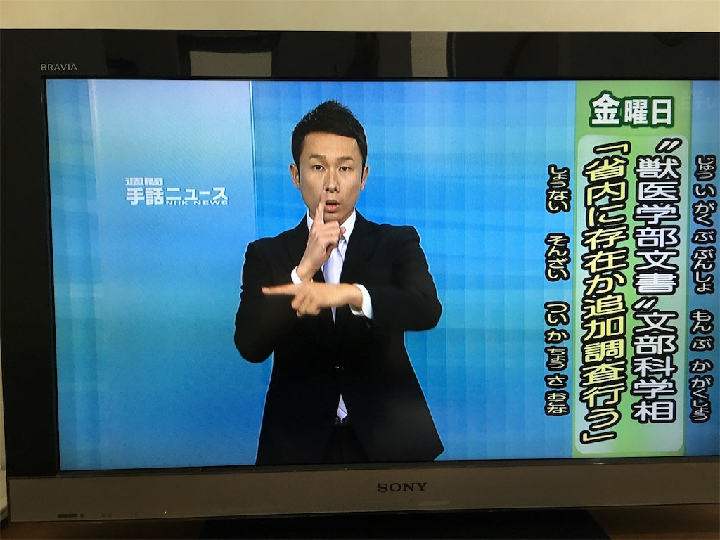 f:id:sayakajyou:20170610163701j:image