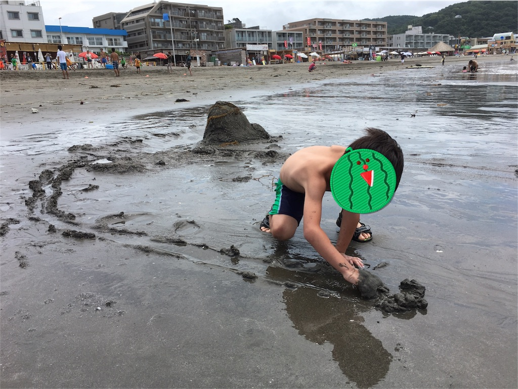 f:id:sayakajyou:20170726163835j:image