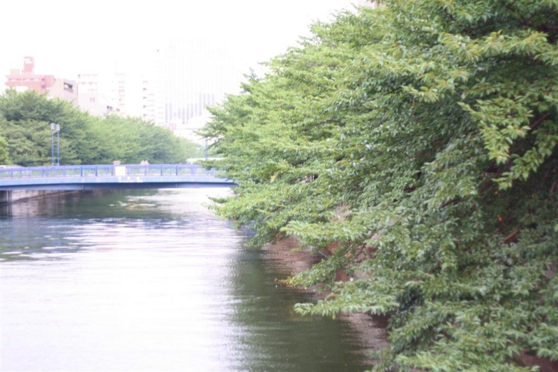f:id:sayakaloe:20100723183526j:image:w400