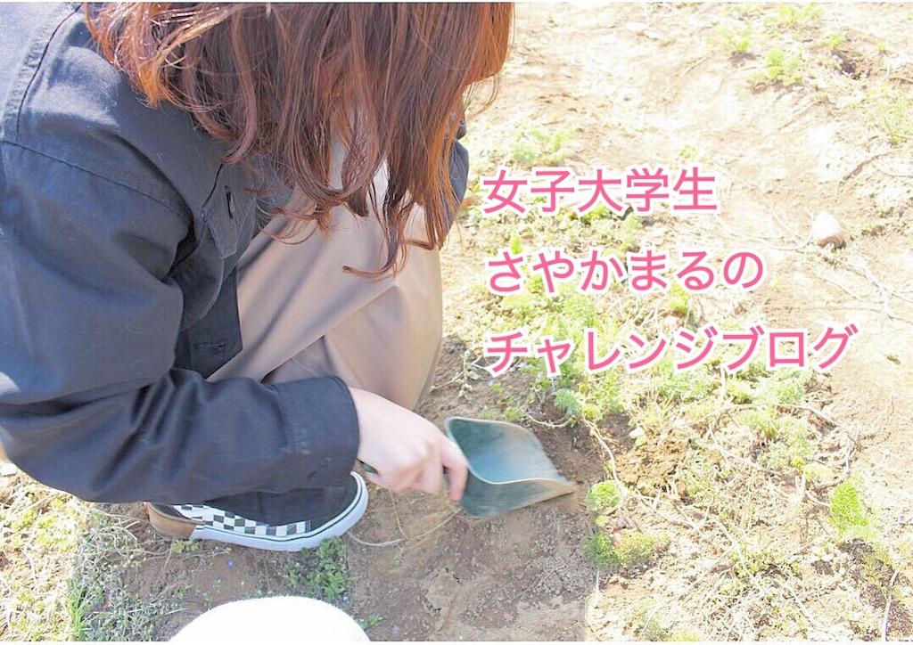 f:id:sayakama1120:20190525010958j:image