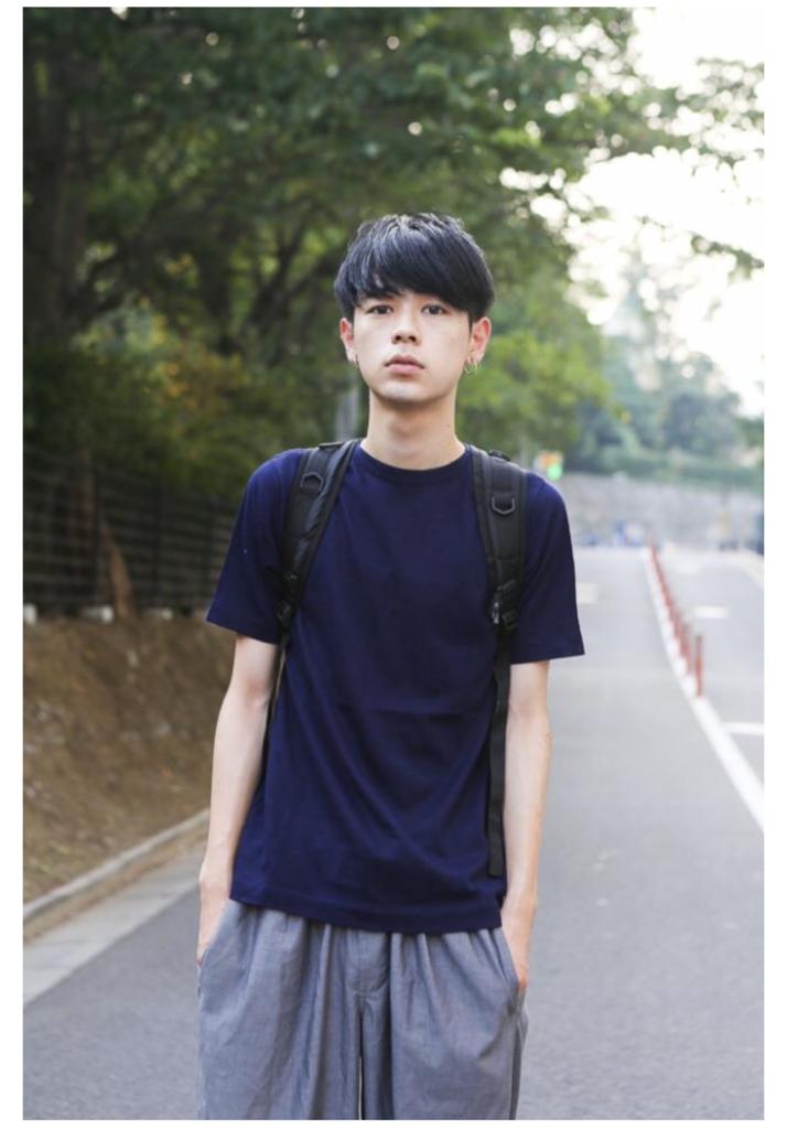 f:id:sayakasumi382:20161127201050p:plain