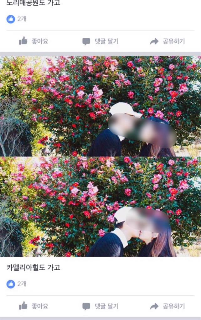 f:id:sayakasumi382:20170120205838j:image