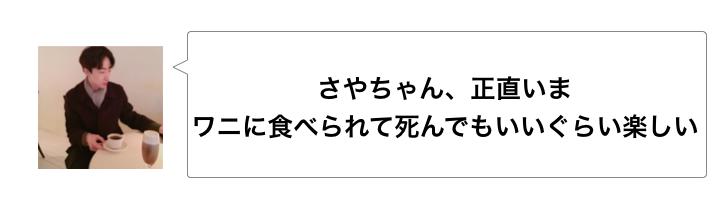 f:id:sayakasumi382:20170223160823p:plain