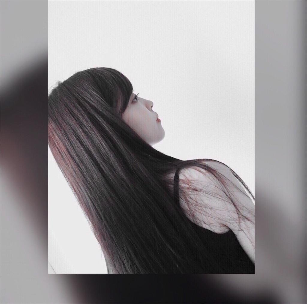 f:id:sayakasumi382:20180105190111j:plain