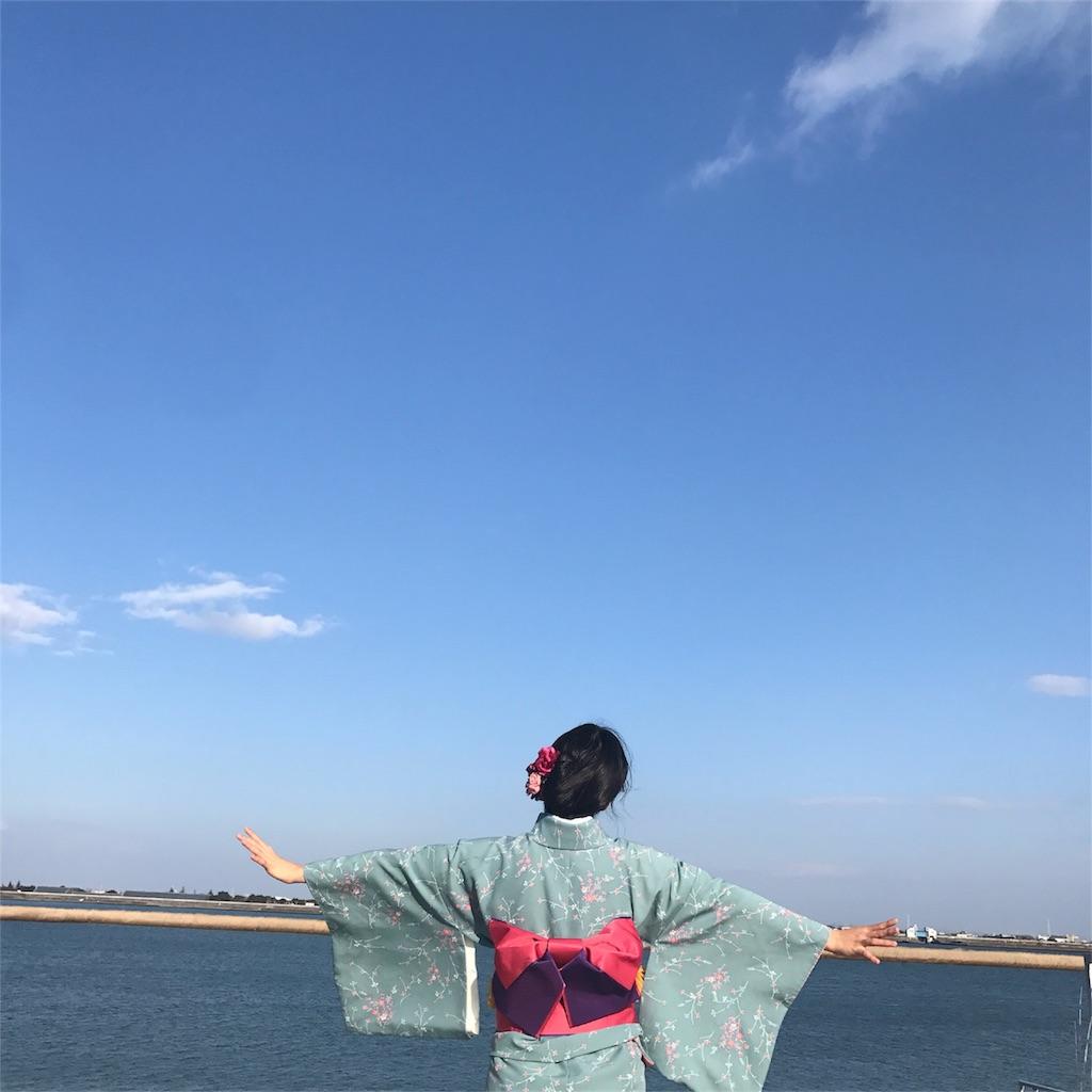 f:id:sayakasumi382:20180123211403j:plain