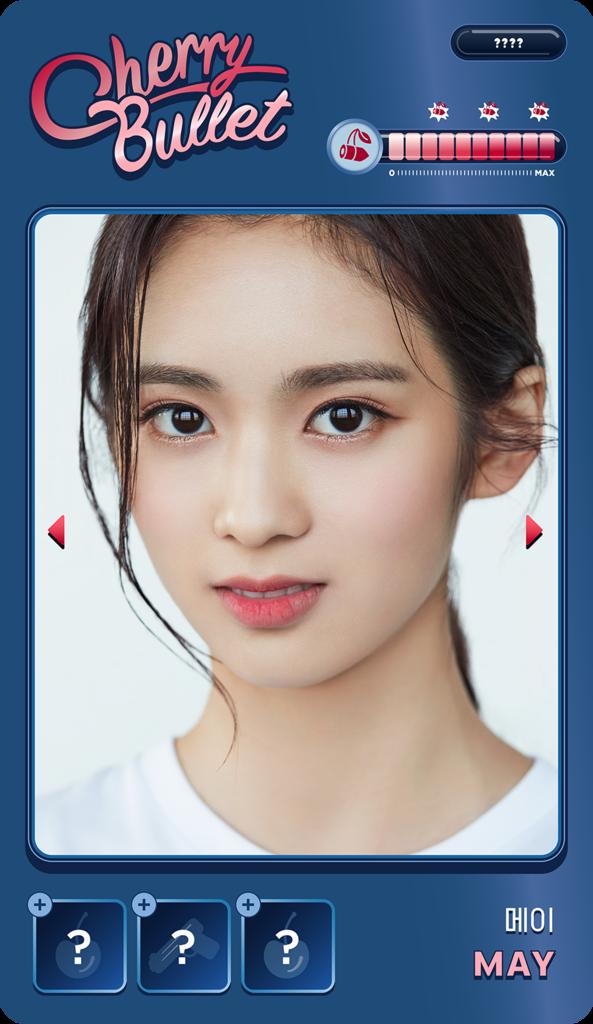 f:id:sayakasumi382:20181213190158p:plain