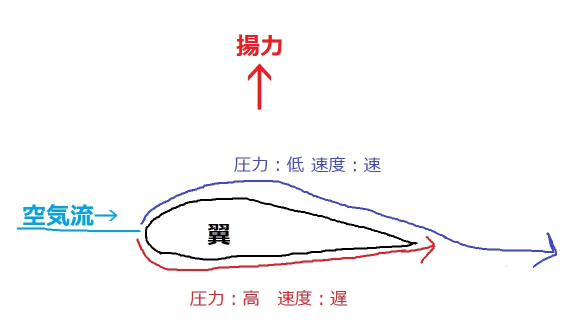 f:id:sayakatyan231:20200801090115j:plain