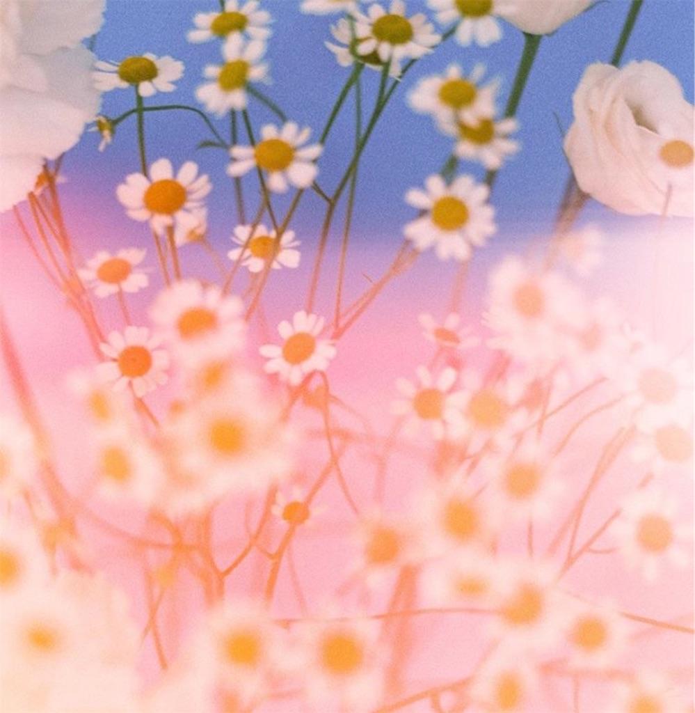 f:id:sayakayama73:20200805131531j:image